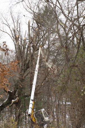 Sawdust flies as Duke Energy maintenance of way (MOW) crew trims fallen and dead trees along transmission line after Winter Storm Diego.