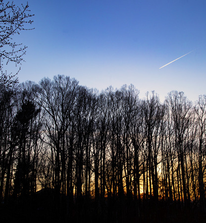 Jet airplane leaves a contrail as it flies into the sunset over a grove of hardwood trees. 版權商用圖片