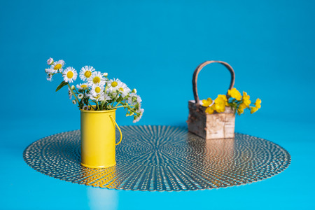 Prairie fleabane wildflowers in a small yellow cylinder vase. Hairy buttercup flowers lie in a small basket on a placemat. Teal blue blackground. 版權商用圖片