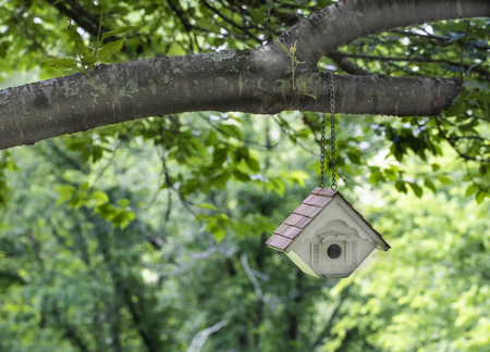 New bird house hangs by a chain from a cherry tree limb.