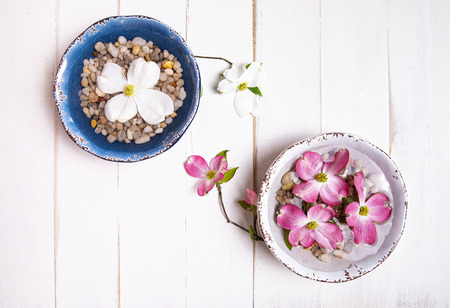 Pink and white dogwood blooms floating over rocks in water-filled bowls on a tabletop. 版權商用圖片 - 126456034