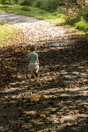 Male toddler walks down drive strewn with fall leaves. Seen from behind. 版權商用圖片 - 126457217