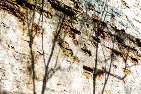 Old building wall with pale colors and shadows. 新聞圖片
