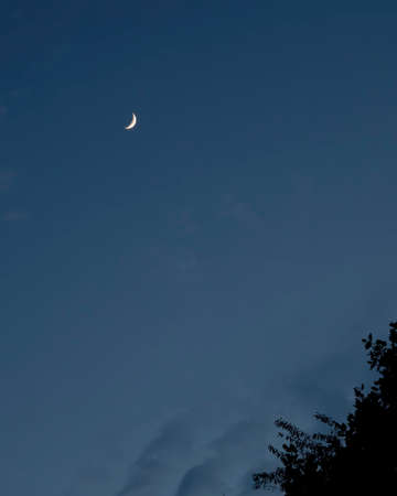 Waxing crescent moon seen low in the west over North Carolina. 版權商用圖片