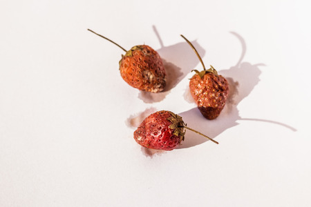 uneatable: Rotten strawberries on white paper