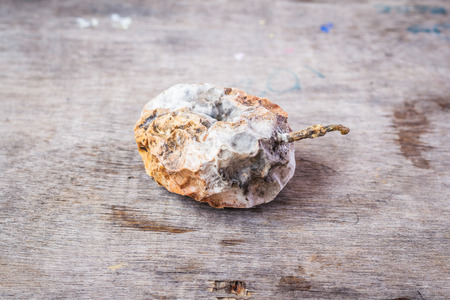 Rotten passion fruit on wooden table Stock Photo