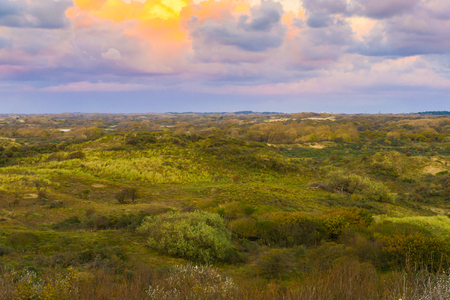 Beautiful and colorful moorland landscape at the dunes of Scheveningen the netherlands around sundown time Stock Photo