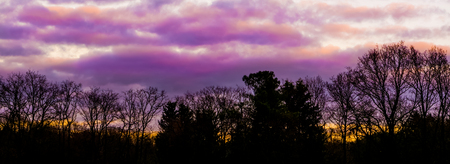 pink and purple polar stratospheric clouds in a forest landscape, a weather phenomenon that rarely occurs in winter, beautiful nature background Stock Photo
