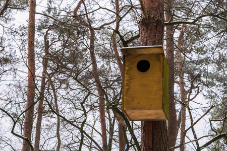 closeup of a simple wooden bird house hanging on a tree trunk, cold winter weather with snow in the forest Stockfoto