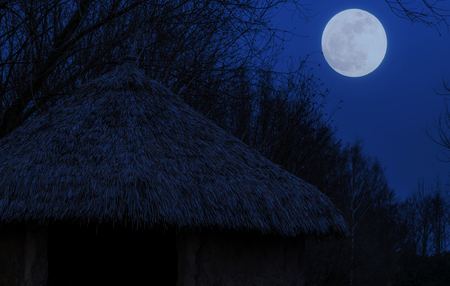 primitive hut with a straw roof by night, Moon in the sky, Nature landscape background