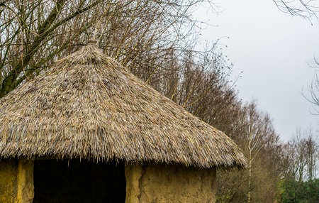 rooftop of a primitive house with thatched roof, garden decoration, nature background