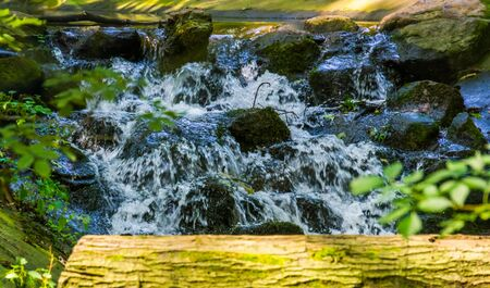 streaming water over rocks in closeup, beautiful garden architecture, nature background of a tiny waterfall Reklamní fotografie