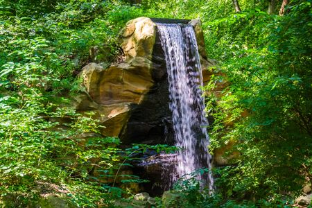 streaming waterfall from a cliff in a forest scenery, nature background, garden architecture