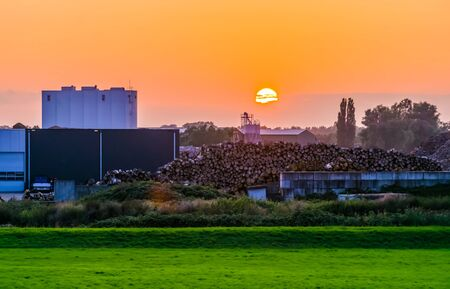 The tree sawmill factory of Rhenen during sunset, rural scenery, The netherlands