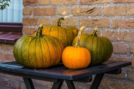 orange with green pumpkins on a table, halloween and autumn decorations, seasonal background