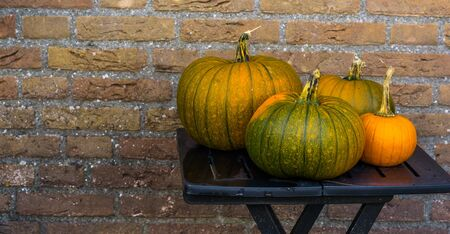 orange with green pumpkins on a table, halloween and autumn decorations, seasonal tradition background Banque d'images - 130817293