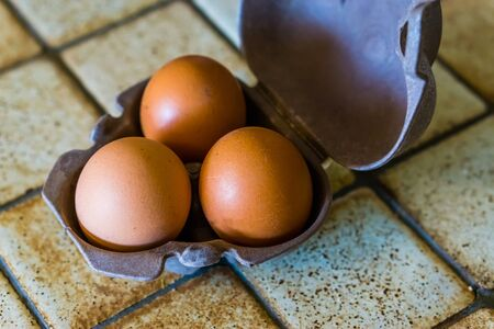 closeup of three chicken eggs in a case, popular protein source, animal food products