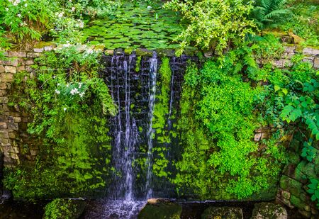pond ending in a waterfall, beautiful garden architecture, nature background 写真素材