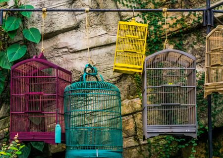 empty bird cages hanging on a bar, pet trade in Asia, Animal store background Stockfoto