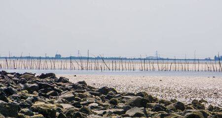 beach scenery of Tholen, the popular and historical weather fishery in the oosterschelde, Bergse diepsluis, Zeeland, The Netherlands