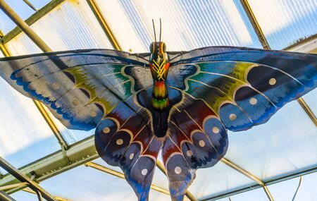 Beautiful multicolored butterfly hanging on the ceiling, creative artwork Stockfoto