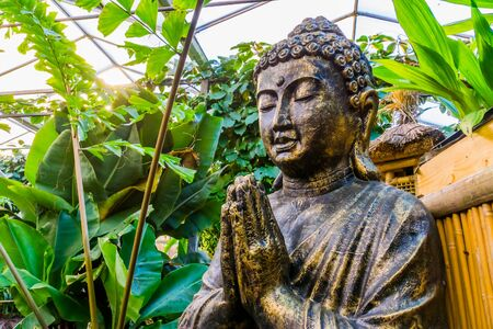closeup of buddha statue in a tropical garden, popular and traditional decoration