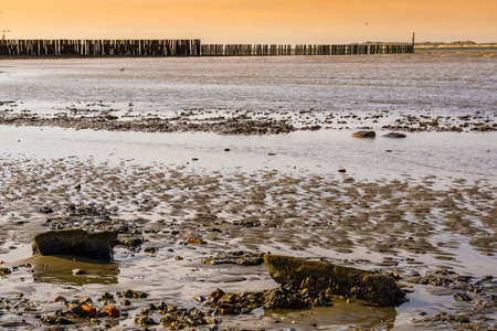 mudflats of breskens beach during sunset, Zeeland, The Netherlands