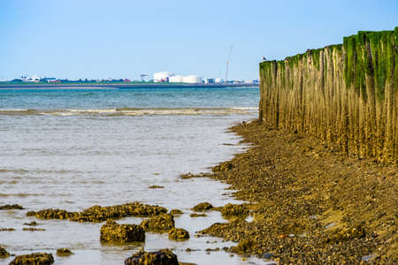ocean with wooden poles and the industrial zone of vlissingen in the background, Breskens beach, The Netherlands