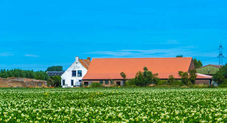 classical dutch country side architecture with landscape, Oostburg, Zeeland, The Netherlands 新聞圖片