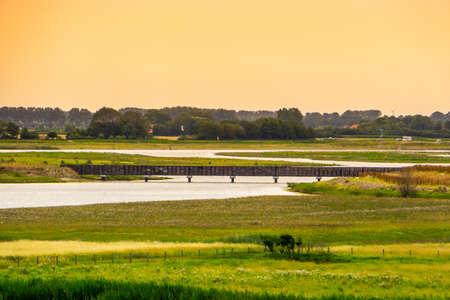 Walking bridge in watedunen reserve during sunset, Breskens, Zeeland, The Netherlands