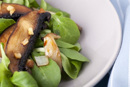 Warm mushroom salad on a bed of baby lettuce. photo
