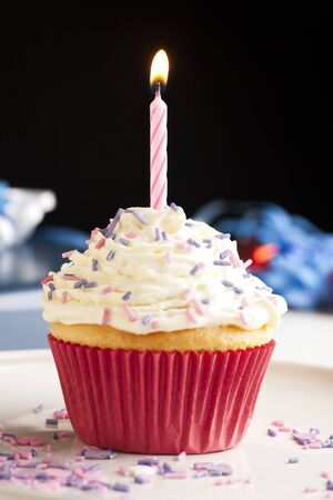 Cupcake with icing and sprinkles topped with one burning birthday candle. Stock Photo - 7963669