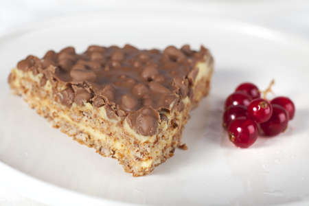 Fresh chocolate almond cake with red currants. 写真素材