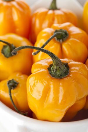 bonnet up: Close up of scotch bonnet peppers in small bowl.