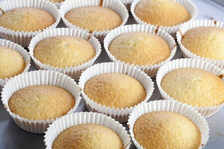 Several cupcakes just out of the oven, cooling before decoration. Stock Photo