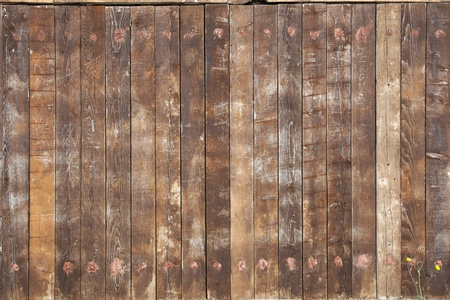 old wood: Old worn wooden gate background texture.