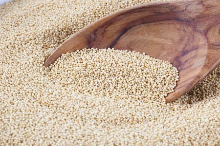 Healthy amaranth grain, a staple food of the Aztecs and becoming popular as a health food.