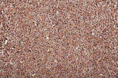 Fresh flaxseeds filling the frame for a food texure or background  photo