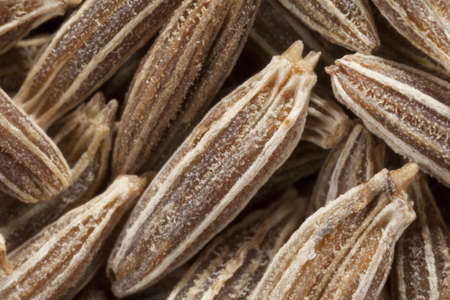 Macro shot of dried cumin seed  photo