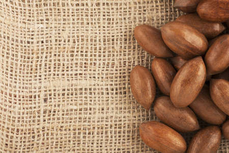 whole pecans: Whole unshelled pecans on burlap sack with copy space