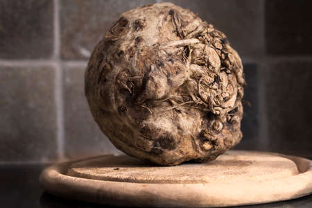 recently: Celeriac, root vegetable recently harvested
