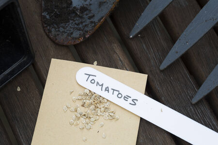 Tomato seeds ready to plant with hand written label. Stockfoto