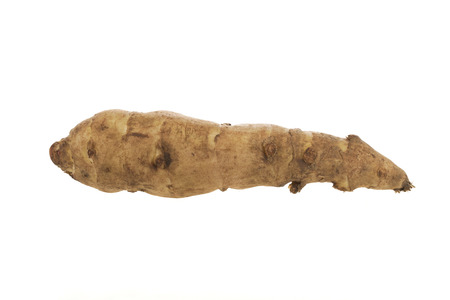 jerusalem artichoke: Single long jerusalem artichoke isolated on white.
