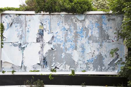 folliage: Old weathered billboard with peeling paper for advertisements of the past, surrounded by folliage. Stock Photo