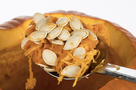 scraped: Large spoon of pumpkin seeds scraped from inside pumpkin to prepare for carving jack o lantern