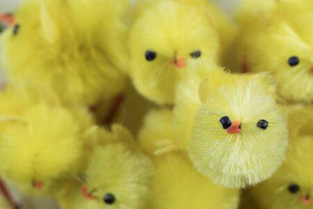 chicks: Festive Easter Chenille Chicks Stock Photo