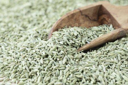 Scoop of Fennel Seeds