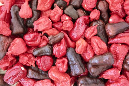 Mixture of very hot peppers including carolina reapers, dragon's breath, bhut jolokia and napa viper. Stock Photo