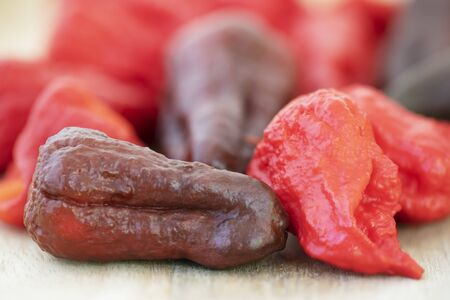 Chocolate Naga Viper and Dragons Breath peppers. Stock Photo
