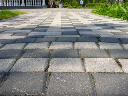 Rectangular paving path in the spring park